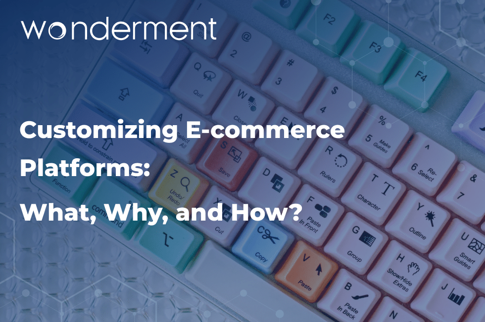 Customizing E-commerce Platforms: What, Why, and How?